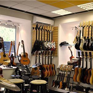 Музыкальные магазины Воробьевки